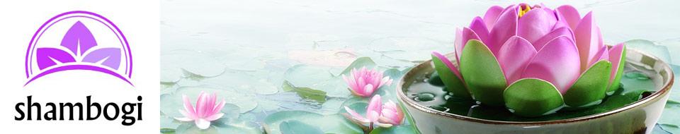 Shambogi.at – Wellness, Ashtanga Yoga & Nuad